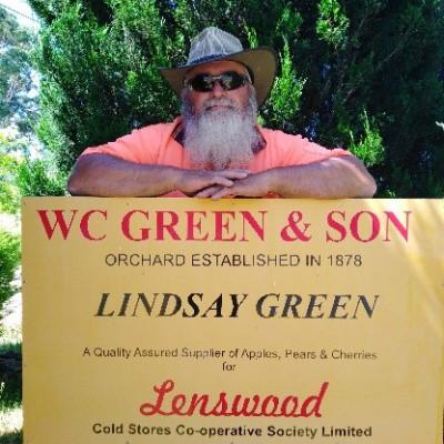 Lindsay Green